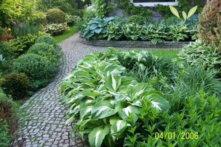 Angielskie ogrody